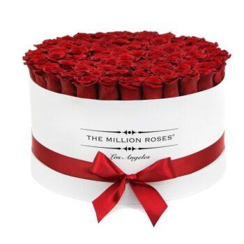 Цилиндр из 51 расной розой