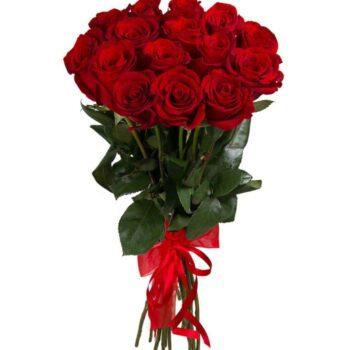 15 красных Украинских роз 60см в упаковке