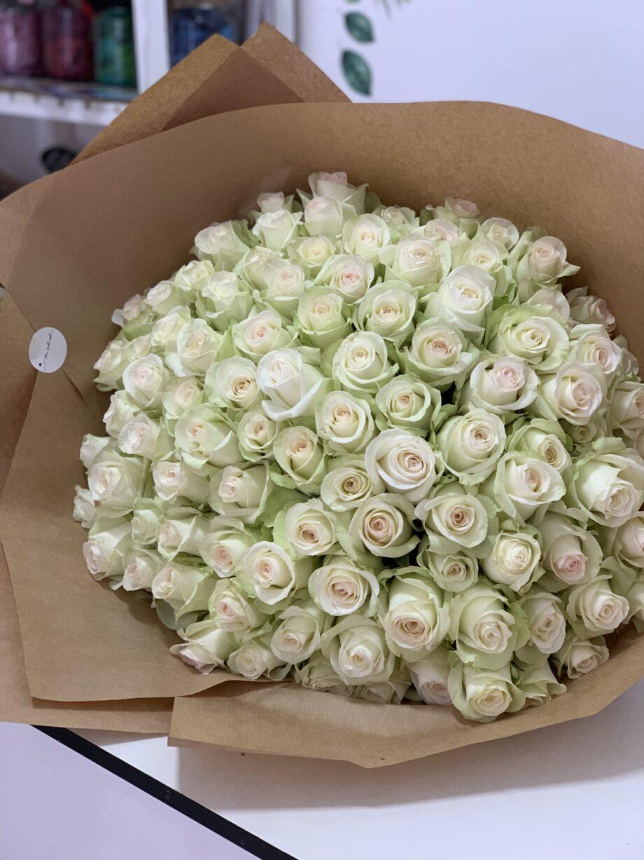 101 белая импортная Роза!