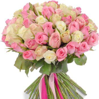 51 розово белая Роза!